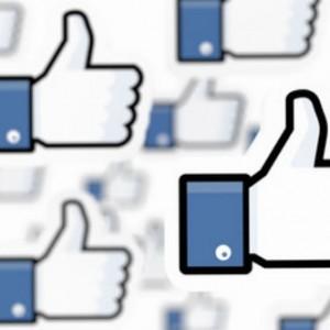 Facebook Page Monitor Sommer Sonne Probiotika